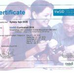 certyfikat 4-1